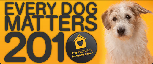 Pedigree Every Dog Matters