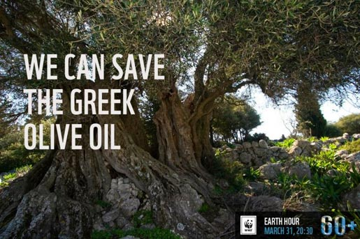 We Can Save The Greek Olive Oil
