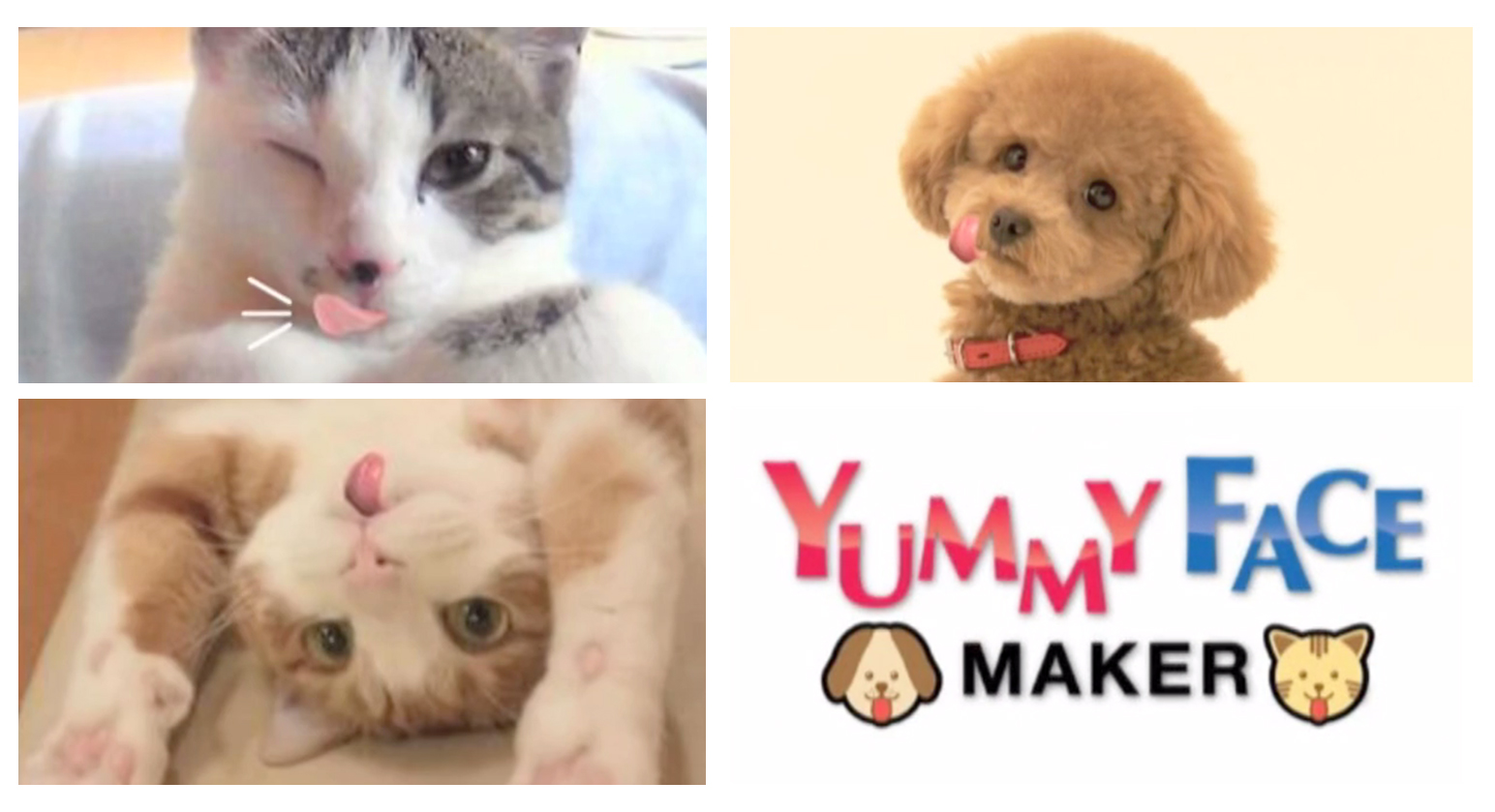 Yummy Face Maker - The Inspiration Room