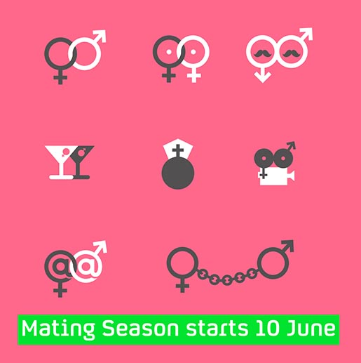 Mating Seaons Starts 10 June