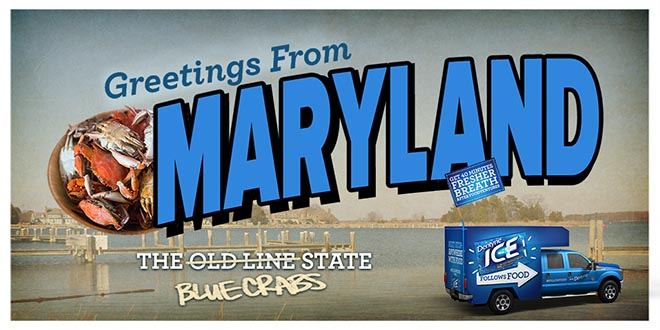 Dentyne Follow Food Truck in Maryland