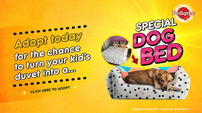 Pedigree Child Replacement programme - bed