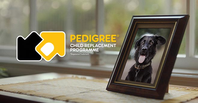 Pedigree Child Replacement programme