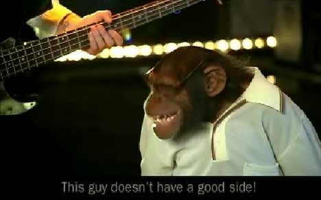 Chimp cracks a joke