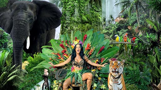 Katy Perry ROAR animals