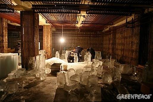 Greenpeace Ice Sculptures
