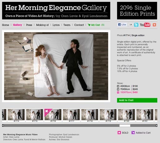 Her Morning Elegance Gallery