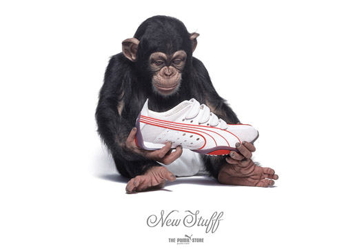 Puma Chimp New Stuff ad