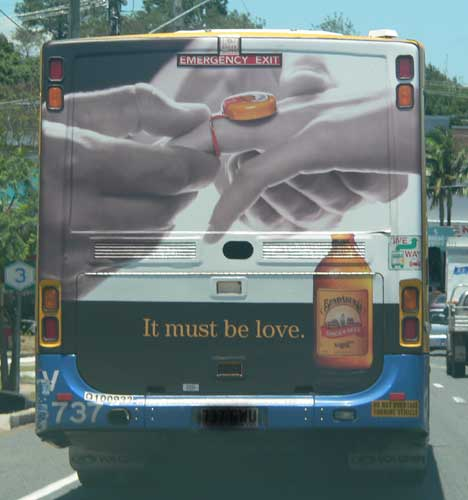 Bundaberg It Must Be Love on a bus