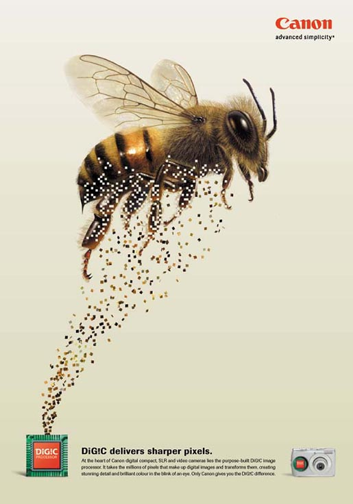 Bee appears in Canon Digic print ad