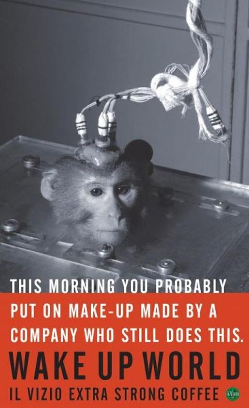 Monkey used in cosmetics tests
