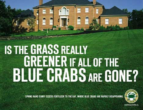 Is the Grass Greener