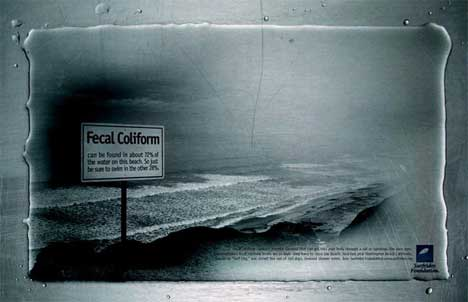 Fecal Coliform poster for Surfrider Association
