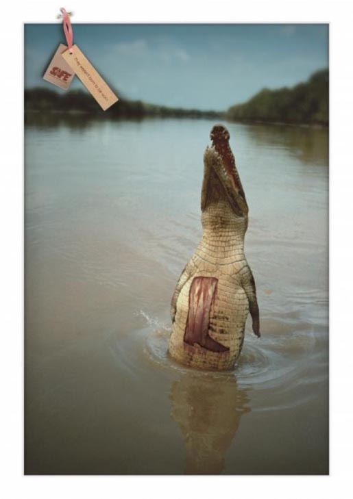 SAFE Alligator print ad