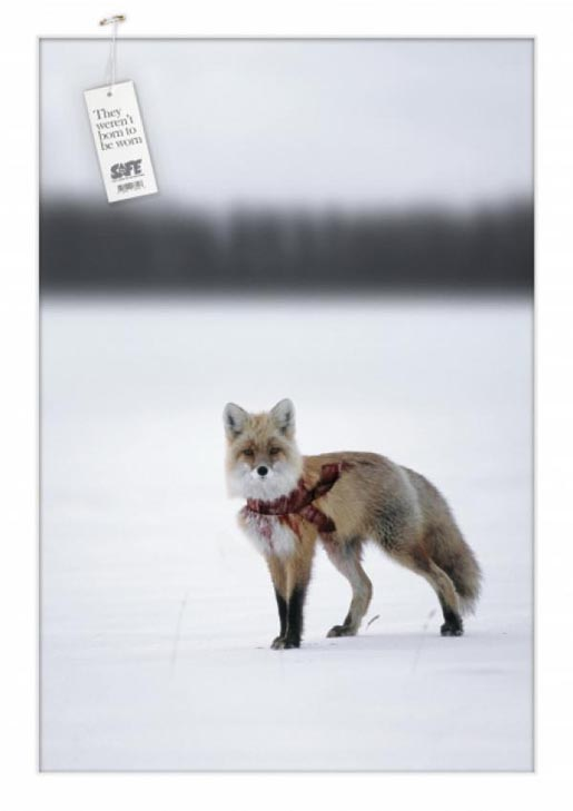 SAFE Fox print ad