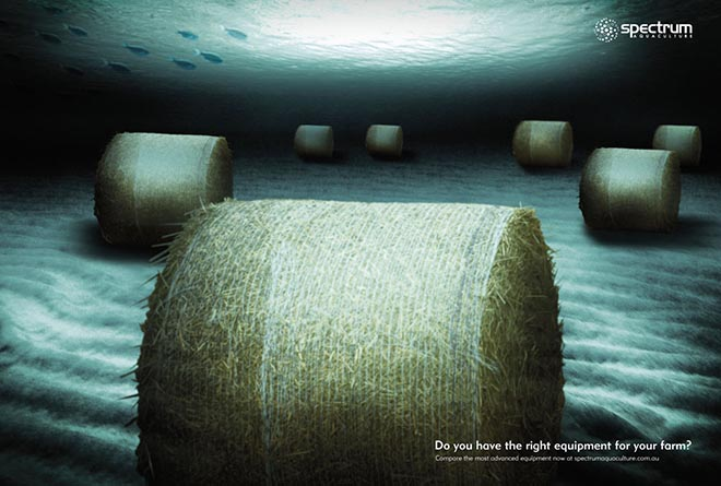 Hay rounds in Spectrum Aquaculture print ad