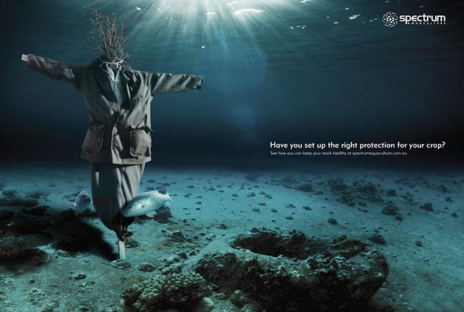 Scarecrow in Spectrum Aquaculture print ad