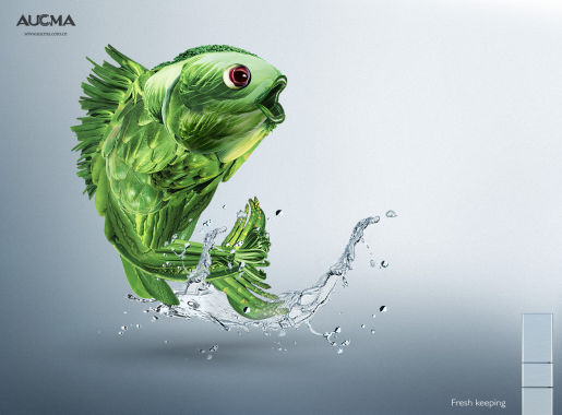 Fish in AUCMA print advertisement