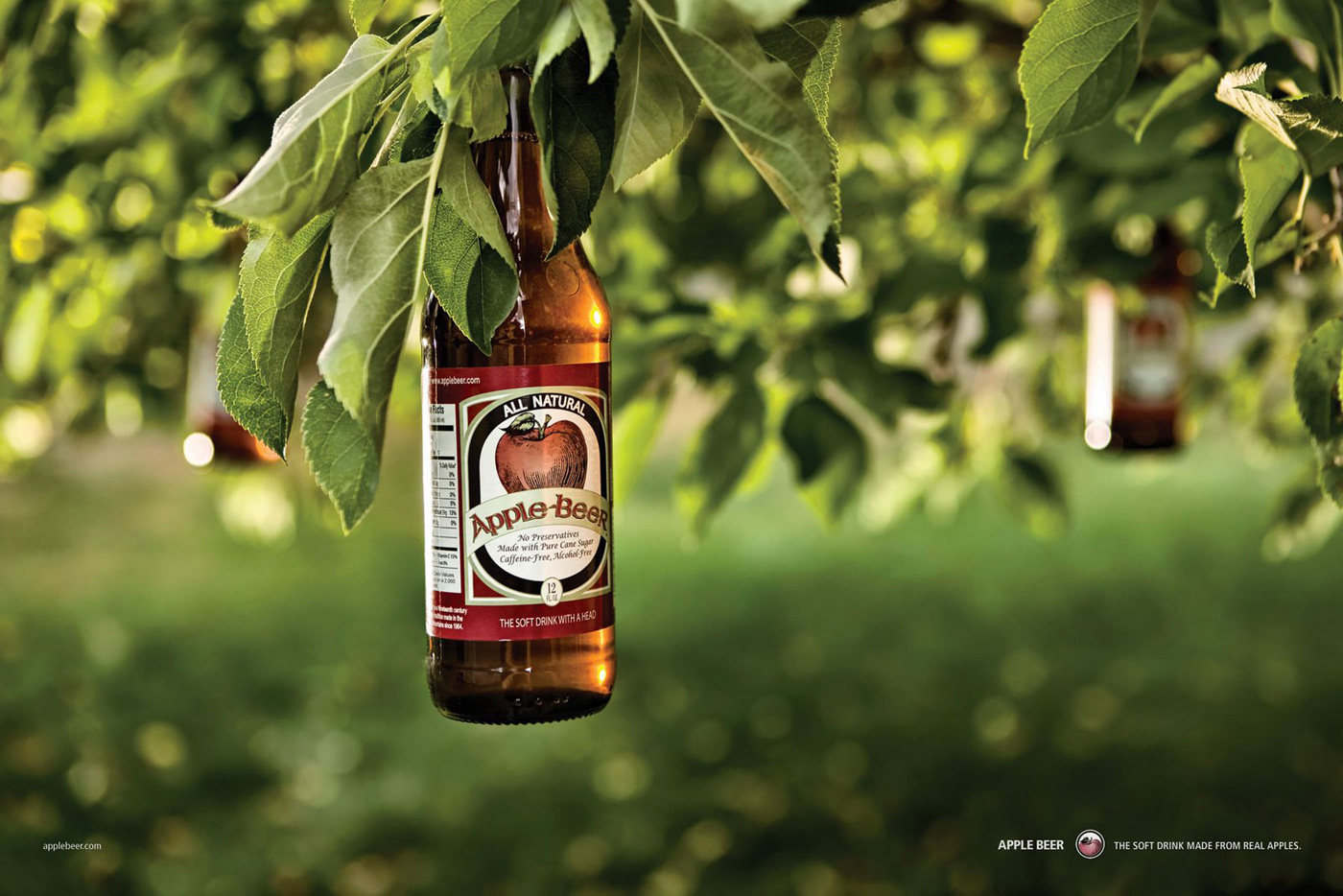 Apple Beer Made from Real Apples - 335.0KB