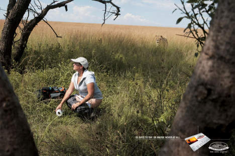 Lioness in Cape Union Mart print advertisement