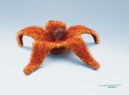 Greenpeace Aurora print advertisement