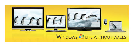 Penguins in Windows without Walls out of home advertisement