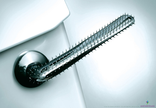 Toilet Handle in Emirates Arthritis Foundation print advertisement