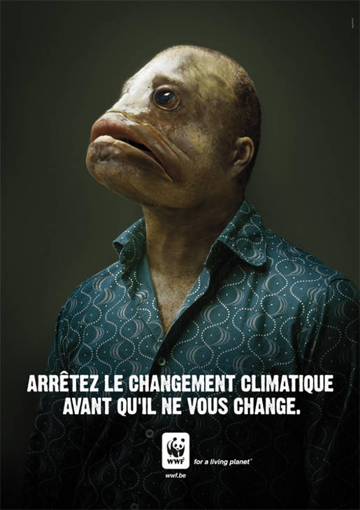 WWF Fishman French