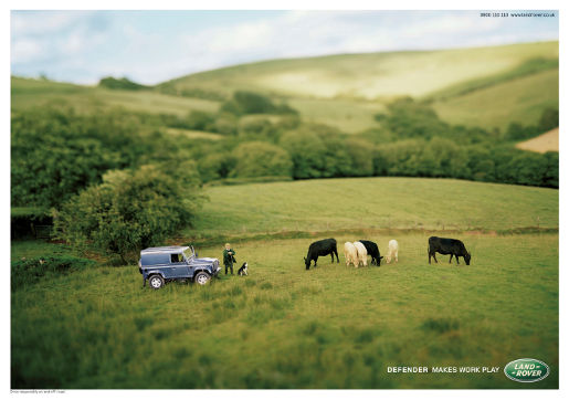 Land Rover Cows print advertisement