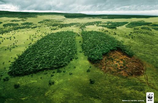 WWF Lungs print advertisement