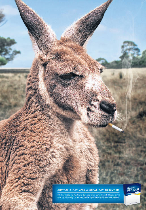 Kangaroo Smoking in Nicabate advertisement
