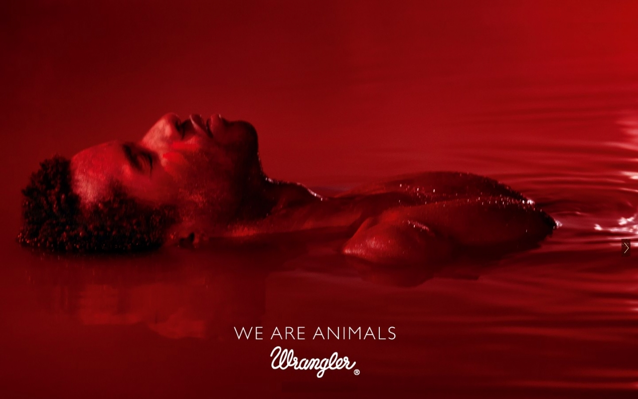 Wrangler red animals we are the inspiration room for We are water