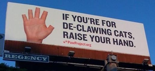 Paw Project Declawing Cats billboard