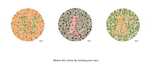 Martin Luther King Jr Color Blindness Test