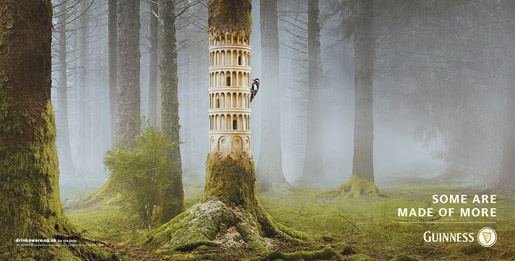 Guinness Some Are Made of More Woodpecker ad Nadav Kander
