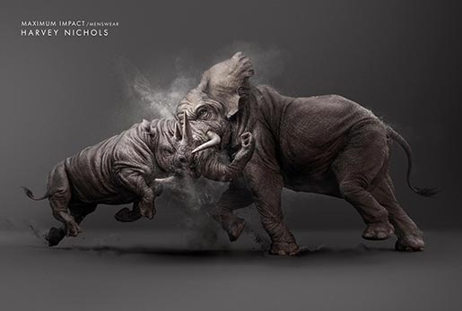 Harvey Nichols Maximum Impact Rhino vs Elephant