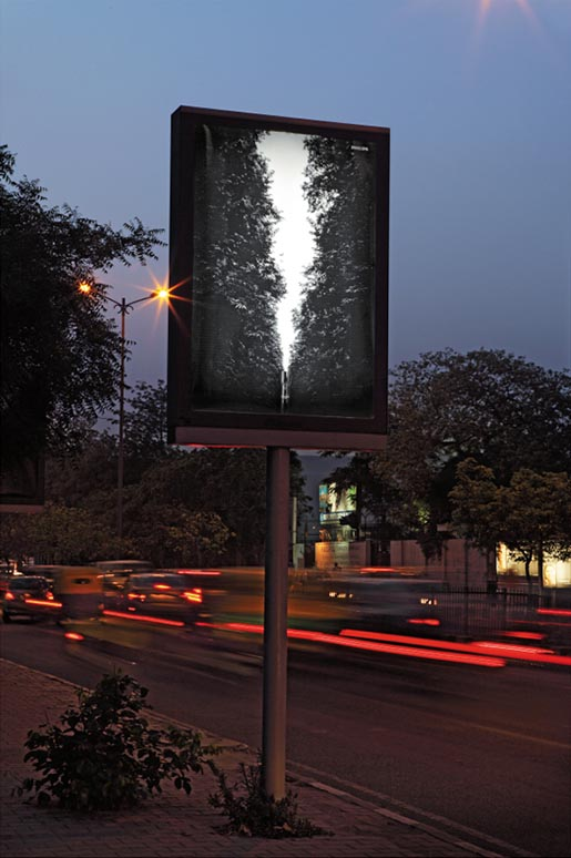 Philips Day Light Poster - Forest