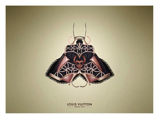 Louis Vuitton Moth
