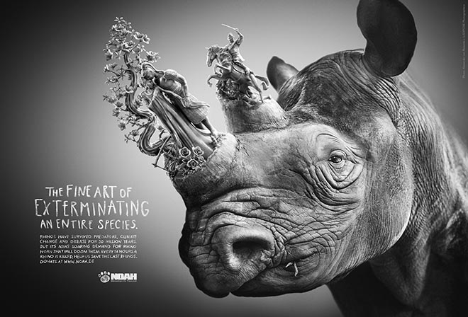 NOAH Rhino Horn Fine Art print advertisement