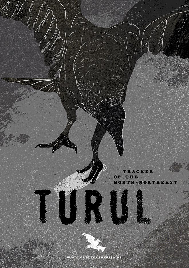 Vultures Warn poster - Turul