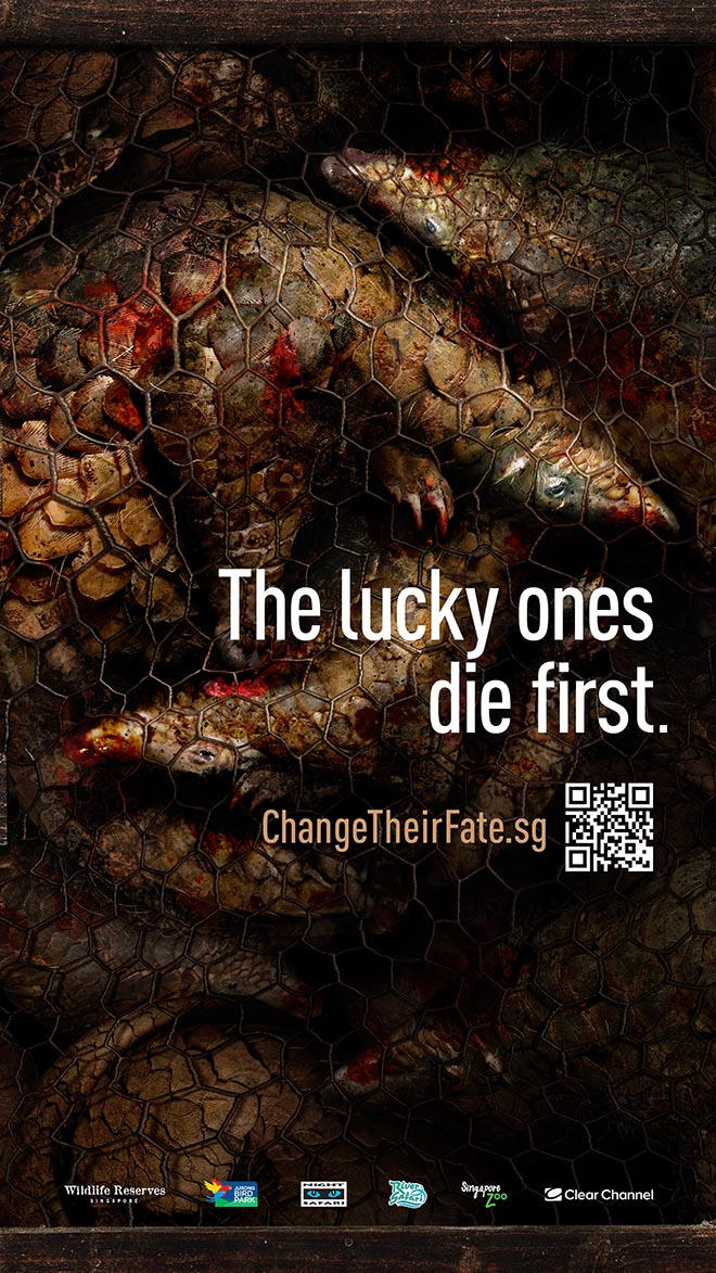 Sunda Pangolin Change Their Fate bus shelter ad