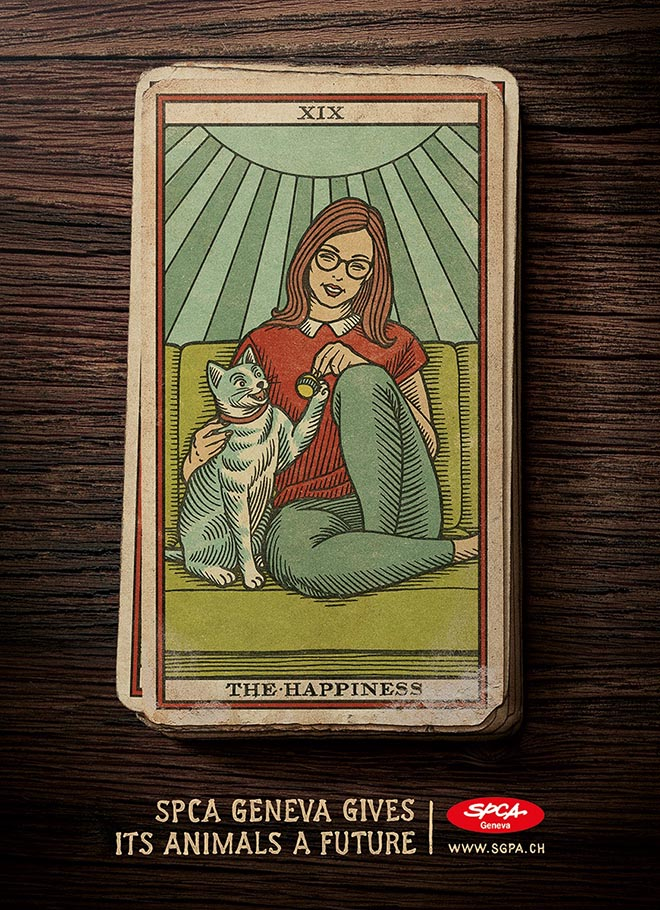 SPCA Tarot Cards Cat Happiness