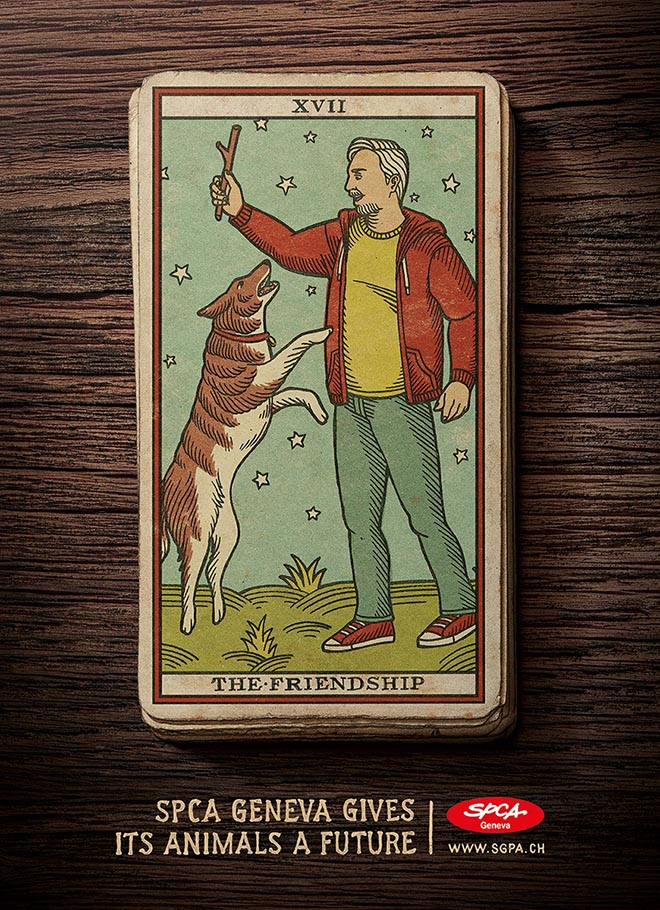 SPCA Tarot Cards Friendship Dog