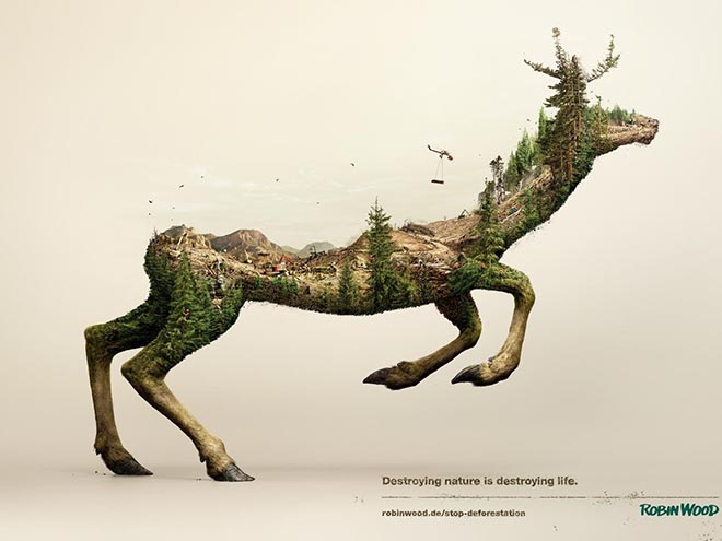 Robin Wood Disappearing Animals - Deer