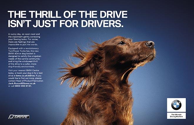 BMW dDrive Dog Basket print ad