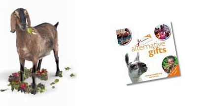 world-vision-goat-catalogue