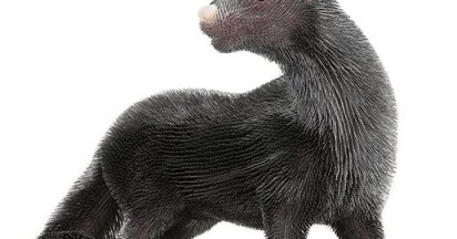 peta-fur-hurts-marmoset-sculpture