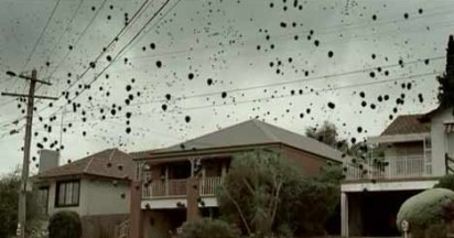 Greenhouse Gas Escapes in Black Balloons