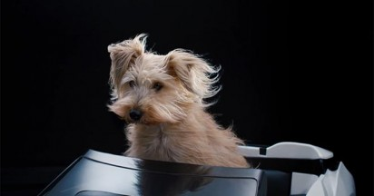 BMW dDrive Dog Basket launched April 1