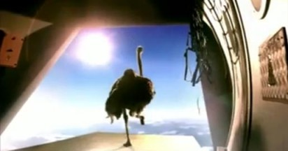 Cadbury Flying Ostrich